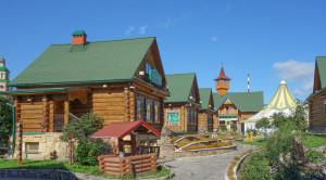 Деревня Туган Авылым - уменьшенная копия фото №5