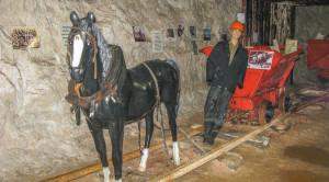 Автобусная экскурсия в Арзамас и Пешелань - уменьшенная копия фото №6
