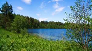 Автобусная экскурсия в Шереметевский замок и озеро Светлояр - уменьшенная копия фото №5