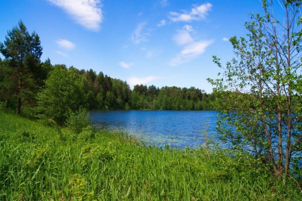 Экскурсия в Шереметевский замок и озеро Светлояр  – фото для каталога