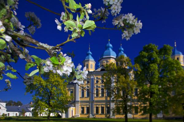 «Нижний Новгород — Санкт-Петербург»  – фото для каталога