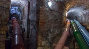 «Царство фонтанов» - экскурсия в Петергоф на метеоре - уменьшенная копия фото №5