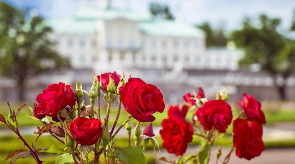 Большой Меньшиковский дворец - фото №1