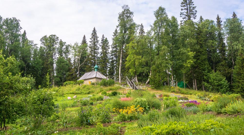 Ботанический сад на Соловецких островах - фото №1