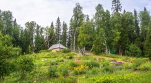 Ботанический сад на Соловецких островах - уменьшенная копия фото №1