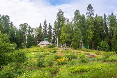 Соловецкий ботанический сад – фото достопримечательности вы увидите на экскурсии