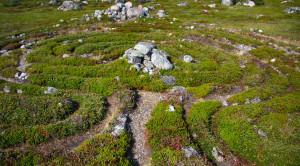 Каменные лабиринты - уменьшенная копия фото №1