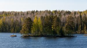 «Кижи - Валаам - Рускеала - Соловки (2 дня)» - экскурсионный тур на 5 дней - уменьшенная копия фото №11
